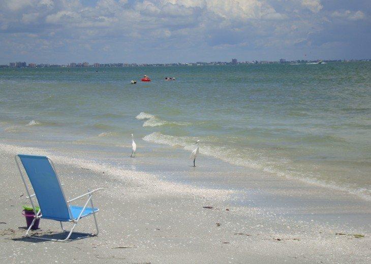 On World Famous Shelling Beach; Loggerhead Cay Condo #22