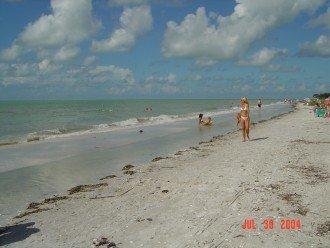 On World Famous Shelling Beach; Loggerhead Cay Condo #1