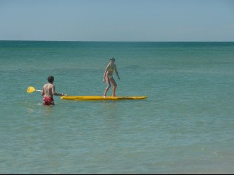 Rent a Paddle Board From Scallop Cove