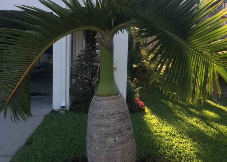 2BR/2BA Key West Style Beach House Furnished**MONTHLY ONLY** #29