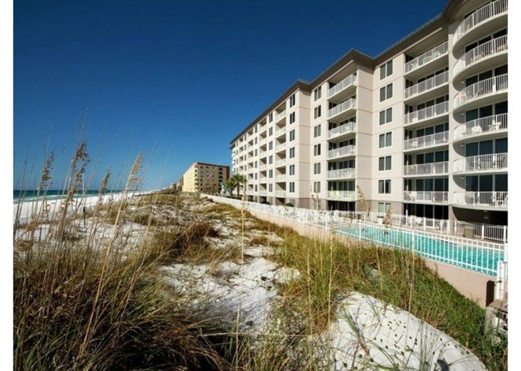 GULF VIEW! NEW BED AND 55 'TV! FREE BEACH SERVICE FOR 2 #21