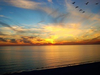 Sunsets every evening over the Gulf of Mexico ~to walk or just gaze peacefully
