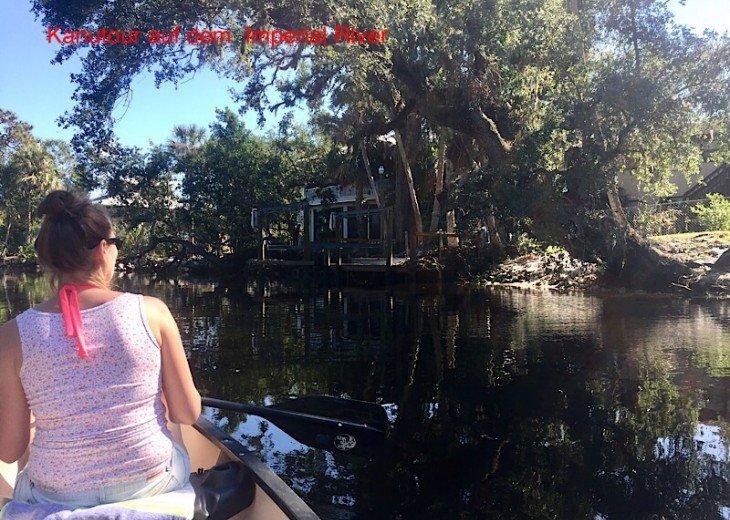 Floridian Dream #50