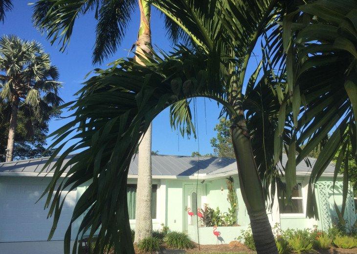 Floridian Dream #16
