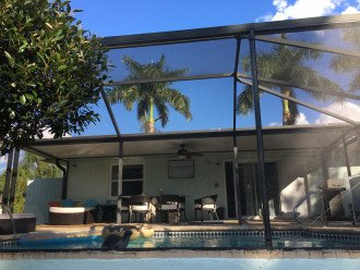 Floridian Dream #1