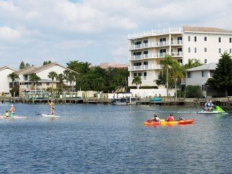 Manatees frequently play in the bay right in front of our condo