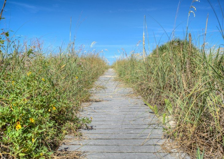 Walkway over the dunes to the water