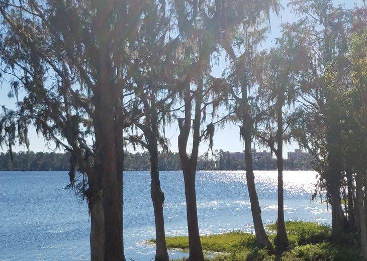 Blue Heron Beach 1 & 2.5 beds 2 bath suite overlooking lake Feb23-Mar1 & Mar9-20 #31