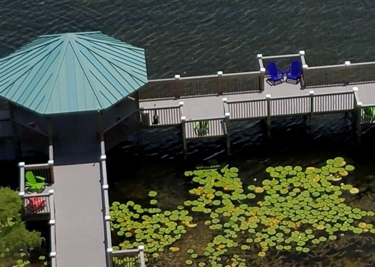 Blue Heron Beach 1 & 2.5 beds 2 bath suite overlooking lake Feb23-Mar1 & Mar9-20 #29