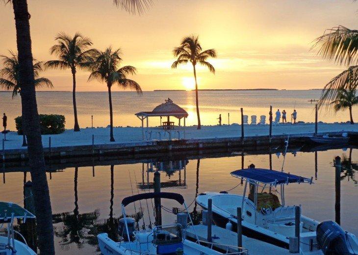 Marina at sunset