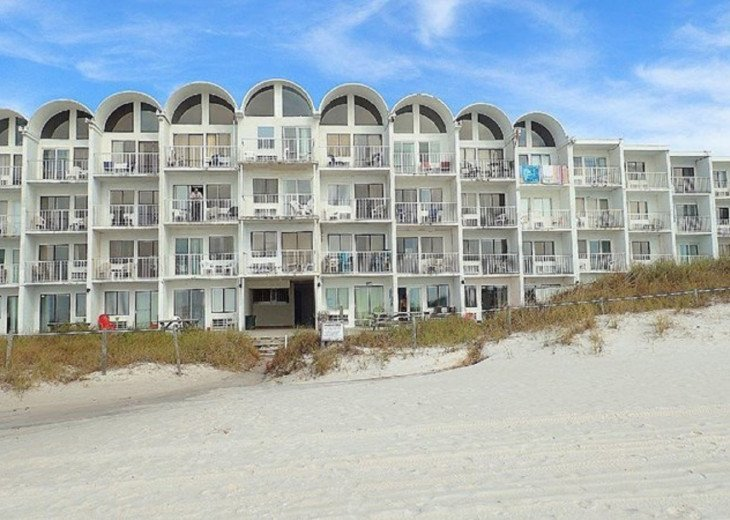 #321 PET FRIENDLY BEACH FRONT! #5