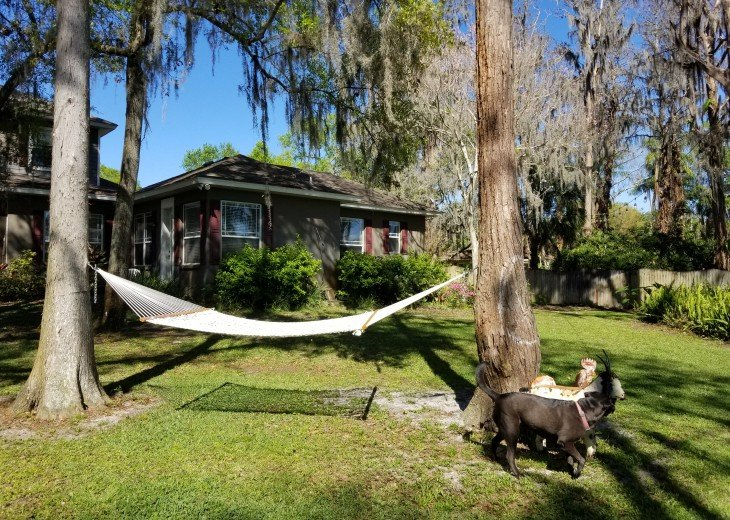 Beautifully Decorated Guest House in Odessa FL #47