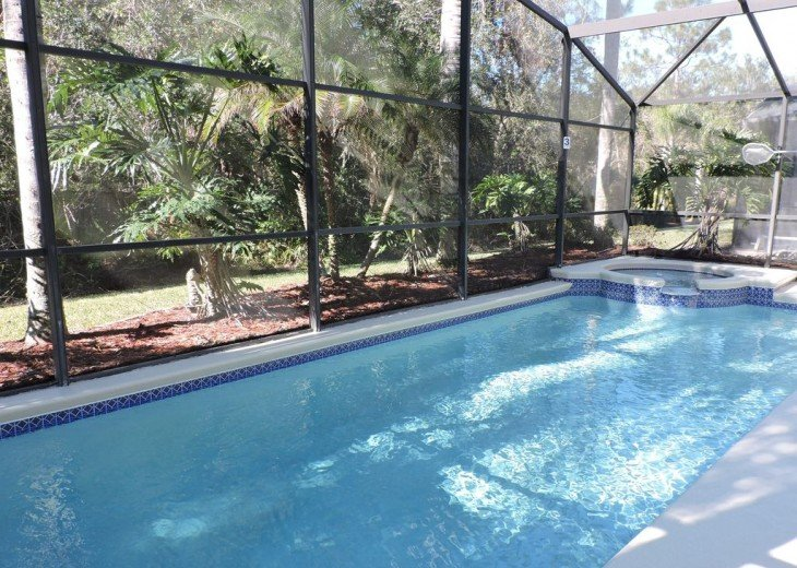 Stunning Villa with own pool/spa and Conservation view. Gated Resort near Disney #5