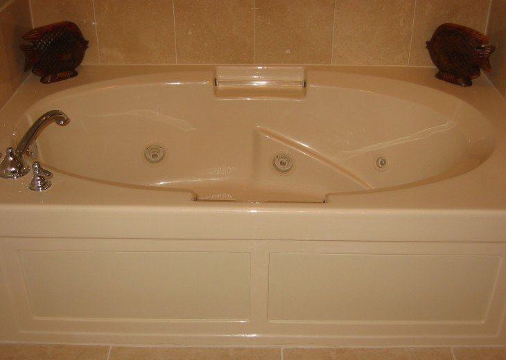 Master bathroom whirpool tub