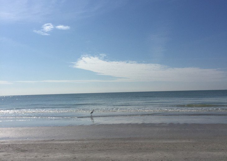Redington beach condo MONTHLY LEASE ONLY #15