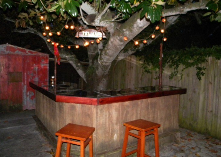 Tiki Bar under the giant magnolia tree