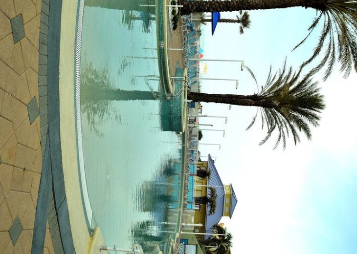 Parrotdise Found at Boardwalk Beach Resort 1804 #2