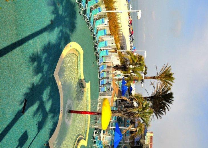 Parrotdise Found at Boardwalk Beach Resort 1804 #5