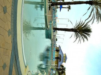 Parrotdise Found at Boardwalk Beach Resort 1804 #1