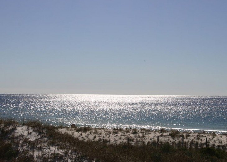 Sparkles and sunshine of old time FL sand dunes, sea oats and white sandy beach.