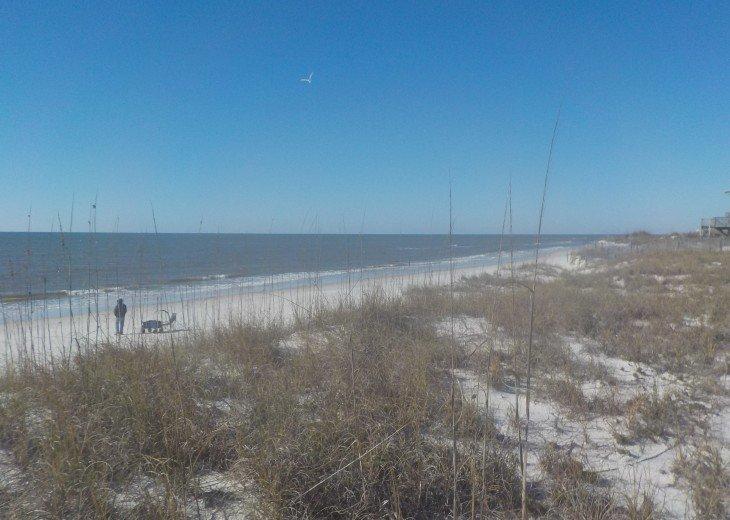 CapeSide Breeze, 1.32 minute walk to Gulf, Pet friendly #15