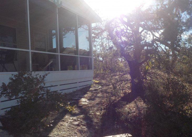 CapeSide Breeze, 1.32 minute walk to Gulf, Pet friendly #37