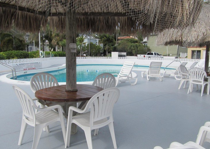Solar Heated Swimming Pool with TiKI Umbrellas and lounge chairs