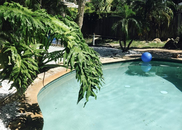 Pool apartment in Palm Drive Cottages #8