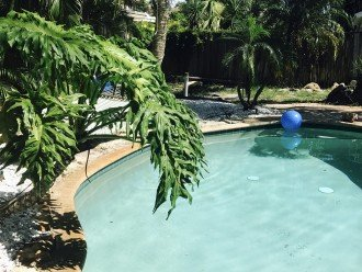 Pool apartment in Palm Drive Cottages #1