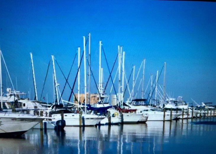 Beachfront Designer Condo Treasure Island Resort PCB 1105 #21