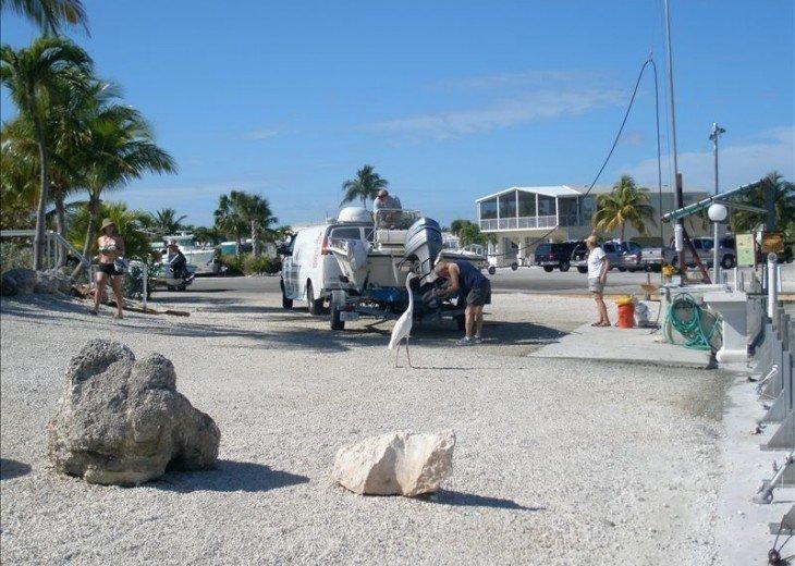 Blue Adventure Florida Keys Waterfront! #14