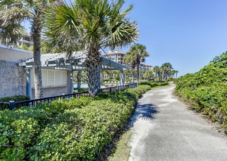 NEW-Oceanfront Oasis on Amelia Island Plantation Resort #41