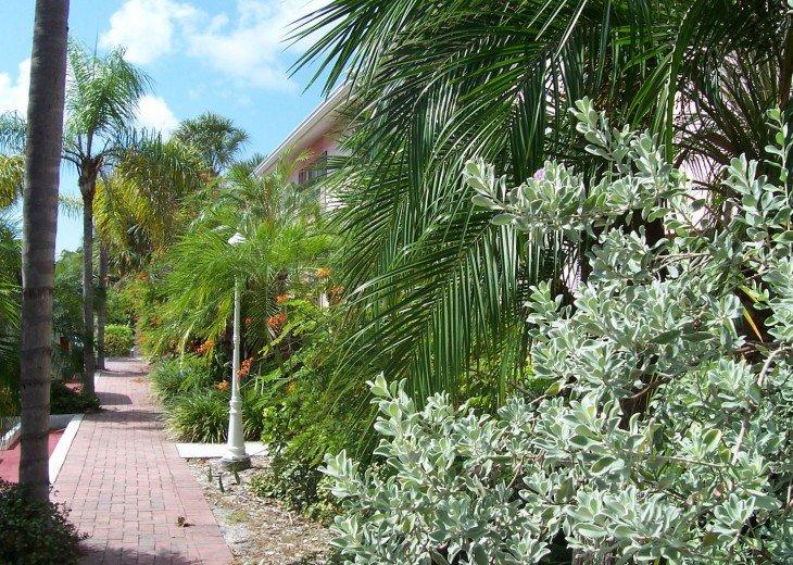 Tropical Escape! Fabulous Amenities 1Br Siesta Palms by the Beach #1C #16