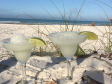 Tropical Escape! 1Br Siesta Palms by the Beach #1C #1