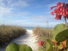 Stroll the Beach....Siesta Palms by the Beach #1D #1