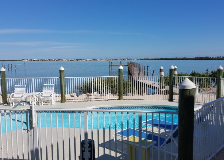 Enjoy the beautiful view of Pine Channel while relaxing at the heated pool.