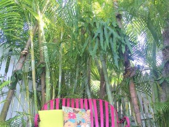 Sit & Relax on the Colorful Glider under the Palms