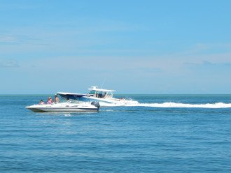 A Boat Tour is a Great Way to See the 10,000 Islands.