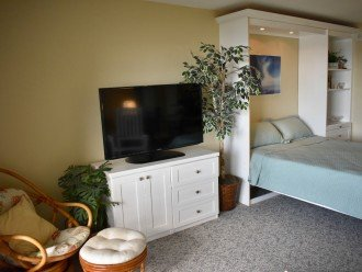 """42"""" TV LED and Murphy bed down"""