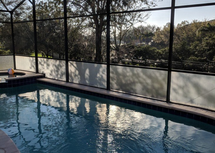 South facing heated pool and spa #3
