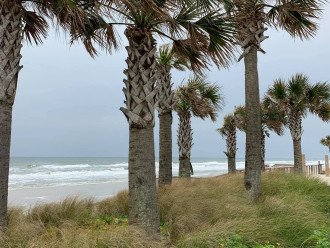 The beauty of simplicity is everywhere at Daytona Beach.