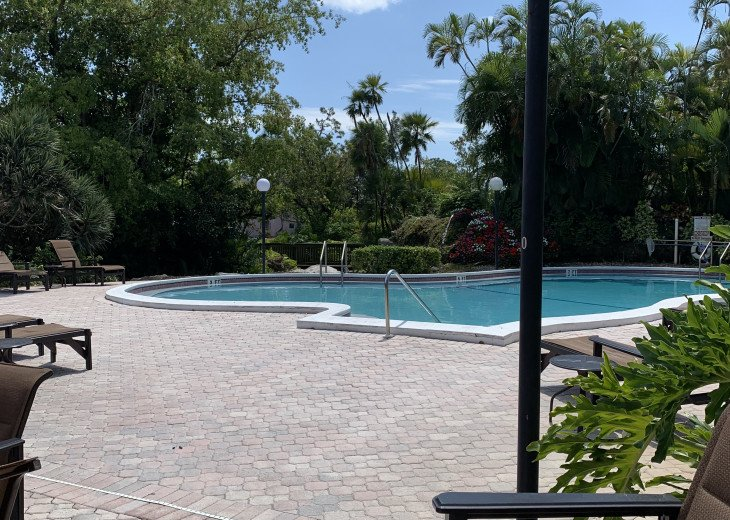 Stunning Forest Lakes Condo for Rent #16