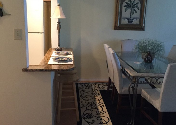 Stunning Forest Lakes Condo for Rent #5