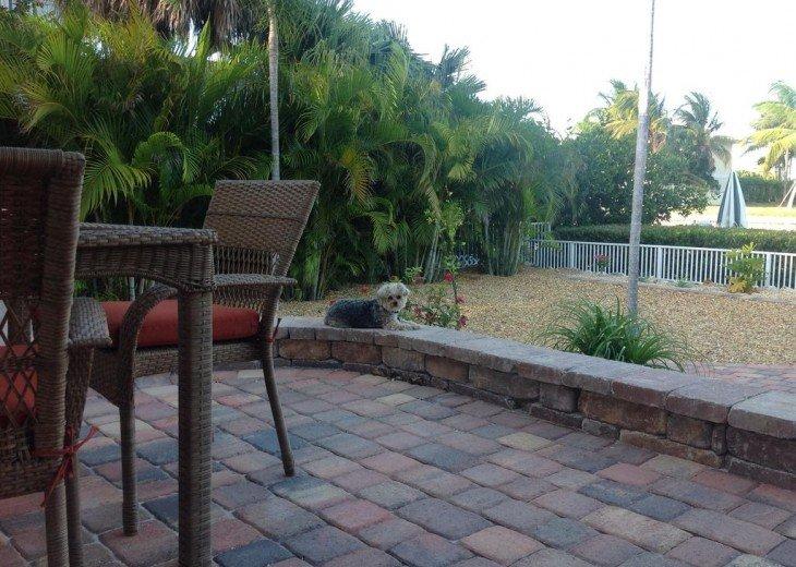 Key Colony Beach Pool Home-Great Family Home- Small Dog Friendly #42