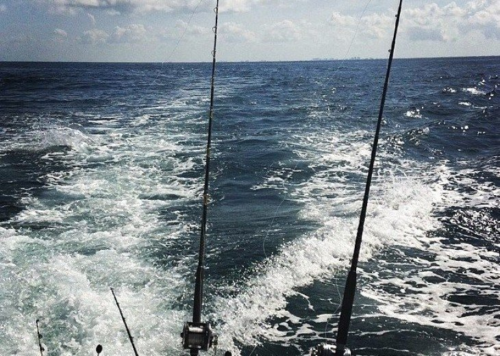 Great Fishing in the Gulf of Mexico