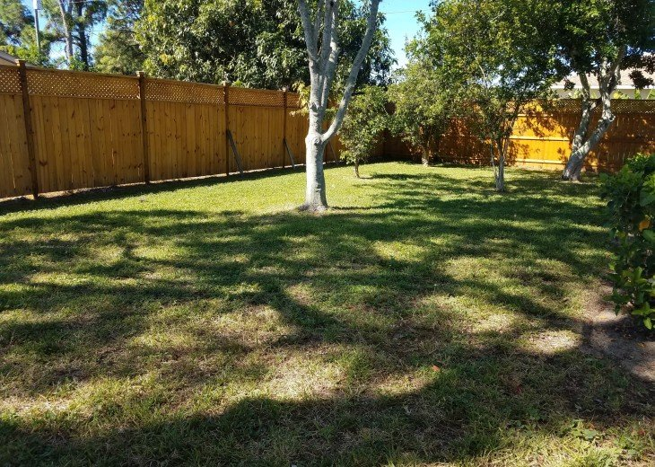 The yard and privacy fencing