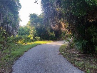 Trail in Shamrock Park