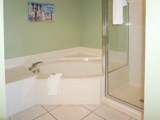 Master bath, corner tub, shower, private toilet room