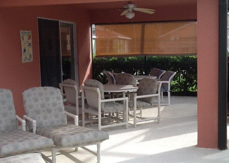 ⭐️Starbird villa ⭐️ #8