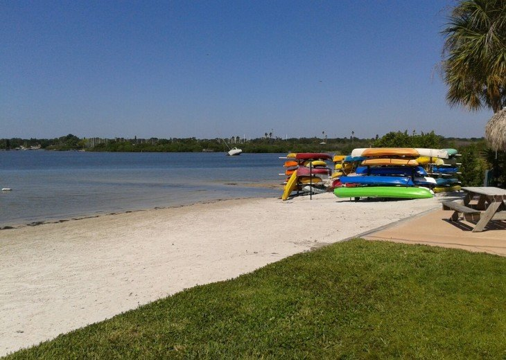 Beach Life St Pete - Monthly rental in a great location! #14